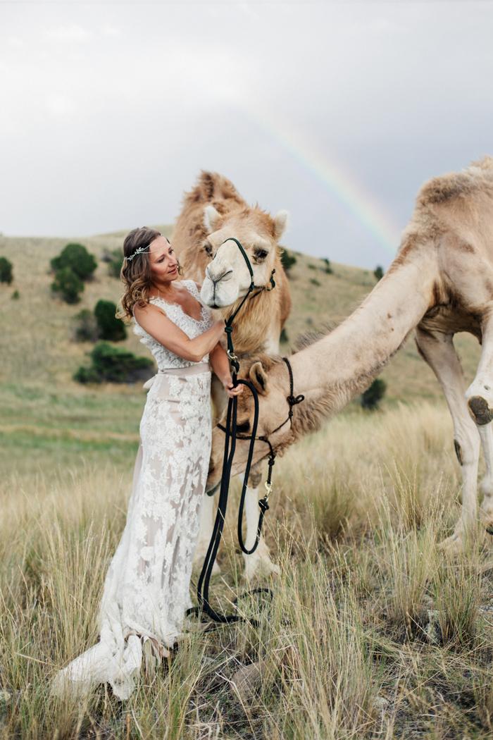 Camel hair wedding