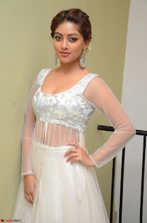 Anu Emmanuel in a Transparent White Choli Cream Ghagra Stunning Pics 086.JPG