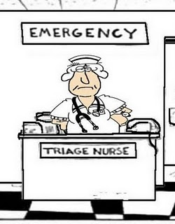 madness: tales of an emergency room nurse: triage pet peeves