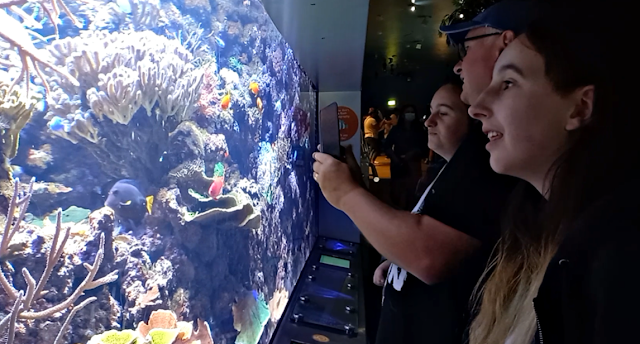 Kids looking at fish in tanks