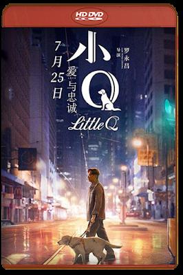 Little Q [2020] [DVDR BD] [Latino]