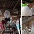 TINGNAN| Mga Anak, Gumawa ng Lobo Gamit ang Platik para sa Kaarawan ng Kanilang Ama