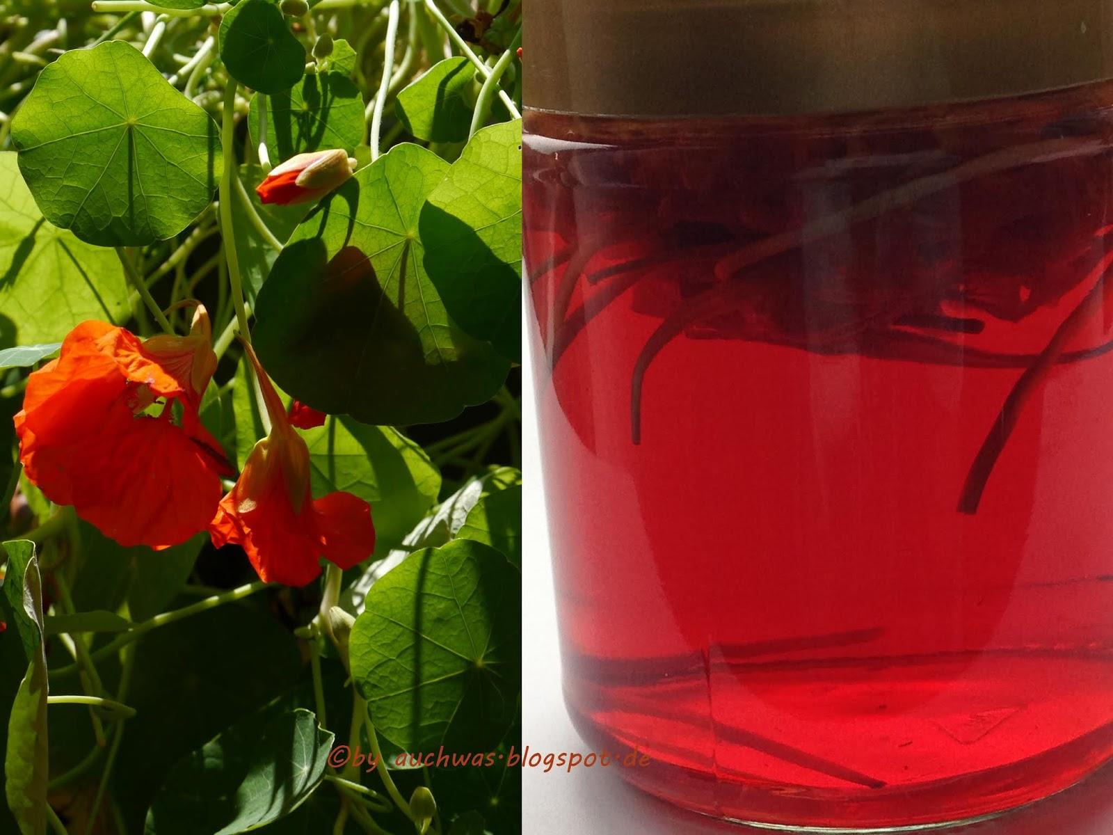 auchwas: Kapuzinerkresse-Blüten-Essig