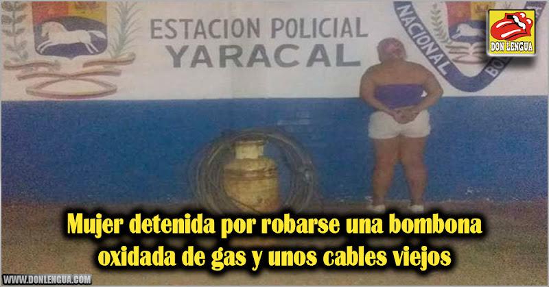 Mujer detenida por robarse una bombona oxidada de gas y unos cables viejos