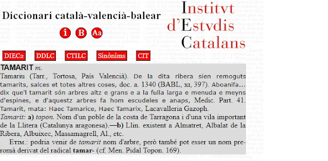 Diccionari català-valencià-balear, DCVB, IEC