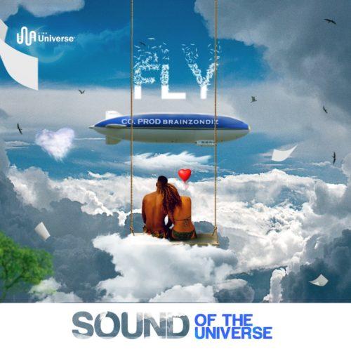 soundoftheuniverse-fly.html