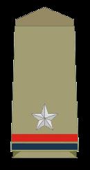 असिस्टेंट सब-इंस्पेक्टर [Assistant Sub-Inspector] (ASI)