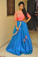 Nithya Shetty in Orange Choli at Kalamandir Foundation 7th anniversary Celebrations ~  Actress Galleries 044.JPG
