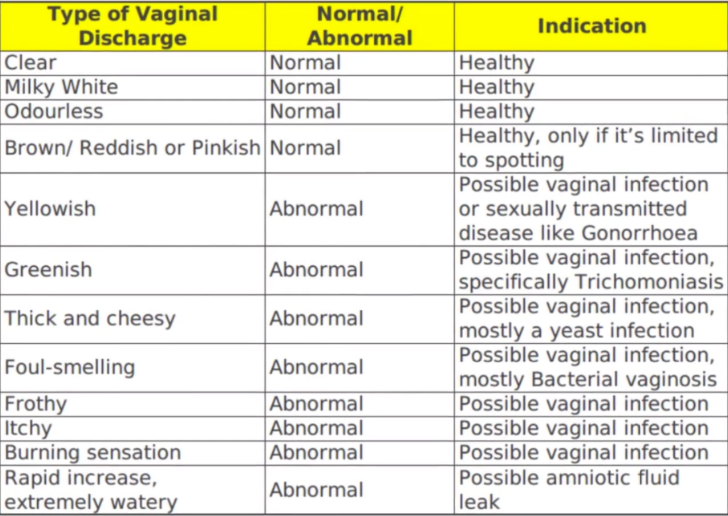 Vaginal Discharge Meaning