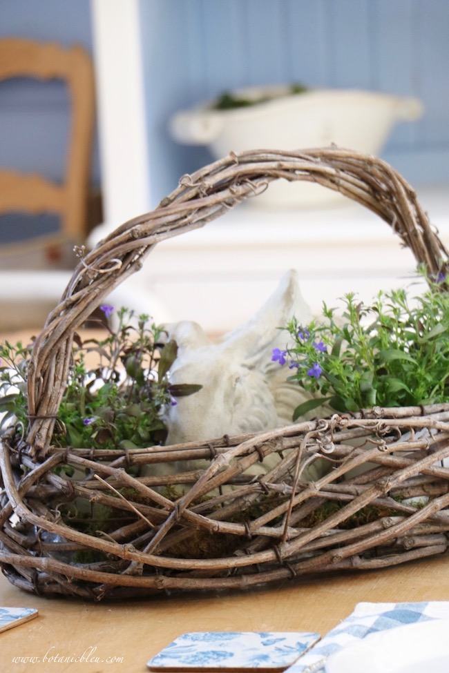 Beautiful Spring Centerpiece in a French Country rustic twig basket filled with a cement garden rabbit surrounded by lobelia bedding plants