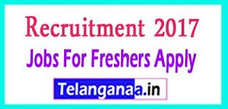 MSCI Recruitment 2017 Jobs For Freshers Apply