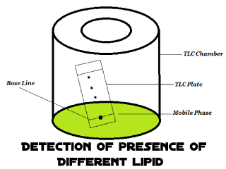 Detection of presence of different lipid components in an oil sample by TLC