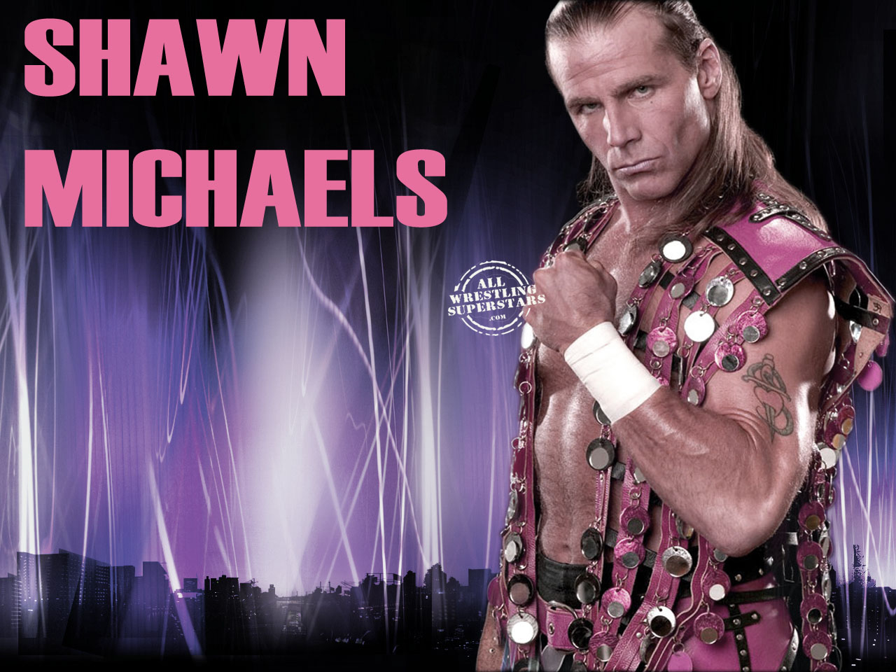 Wwe Champs Hbk Heart Break Kid Shawn Michaels