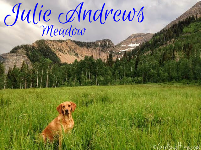 Hiking to Julie Andrews Meadow