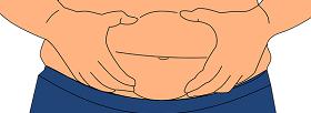 تأثير النظام الغذائي على الدهون الحشوية