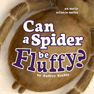 A picture book about spiders