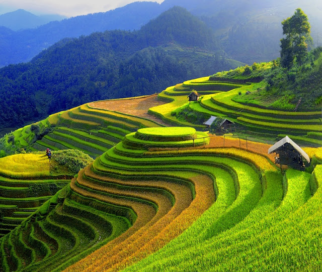 Mu Cang Chai - 1 of the 19 most beautiful mountains in the world