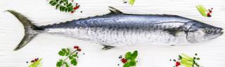 Seer/King Fish in Tamil