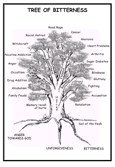 tree bush diagram prophetic fire the    tree    of bitterness with    diagram     prophetic fire the    tree    of bitterness with    diagram