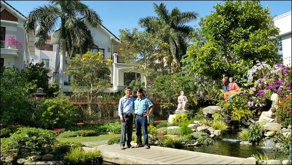 Hồ cá Koi sân vườn đẹp, thiết kế hồ cá Koi đẹp