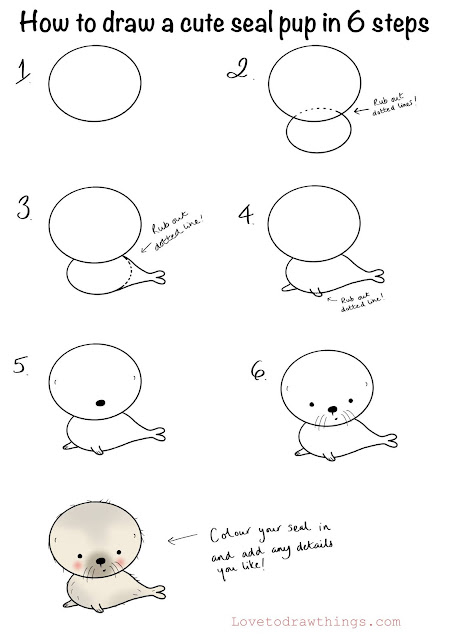 How to draw a cute seal pup in 6 steps