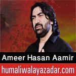 http://www.humaliwalayazadar.com/2012/12/ameer-hasan-aamir-nohay-2001-2013.html