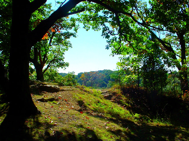 Jackson Washington State Forest - Pinnacle Peak Trail