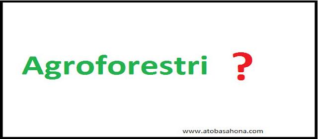 4 Pengertian Agroforestri Menurut Para Ahli