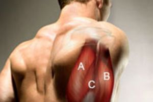 6 Best Tricep Exercises For Mass
