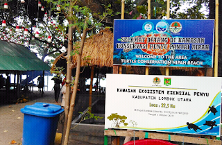 Turtle Conservation Center - TCC di Pantai Nipah, Lombok Utara