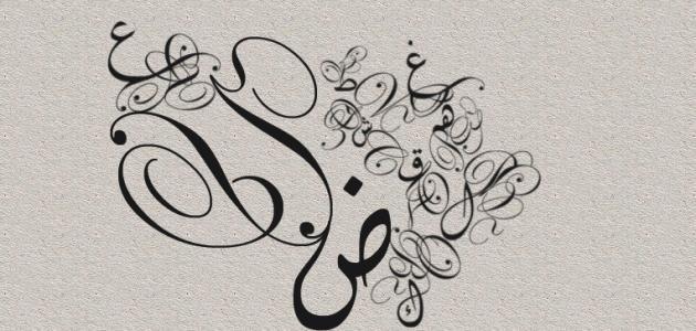 اللغة العربية بين تقييد البصريين ورحابة الكوفيين