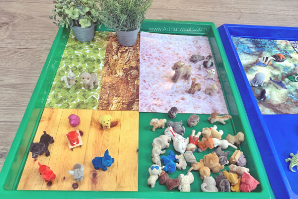 animal sorting Gratnells tuff tray activity idea