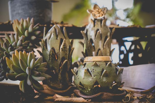 Cactos de cerâmica em forma de luminária