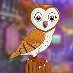 G4K Genial Barn Owl Escape