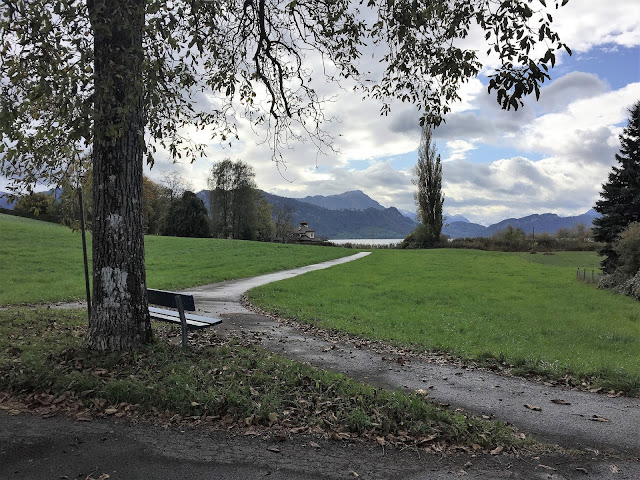 Mein neuer #12tel Blick: Nussbaum und Bürgenstock
