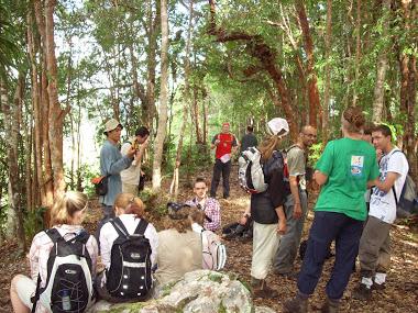 kegiatan penelitian di hutan lindung lambusango