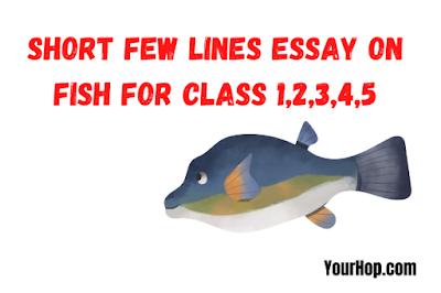 essay on fish