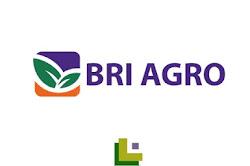 Rekrutmen Pegawai Bank BRI Agroniaga Besar Besaran Tahun 2020