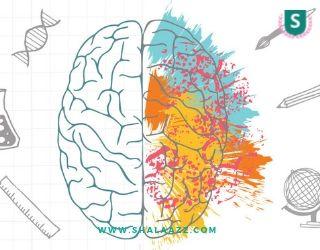 Cara Mengoptimalkan Kecerdasan Melalui Penyeimbangan Otak Kiri dan Kanan