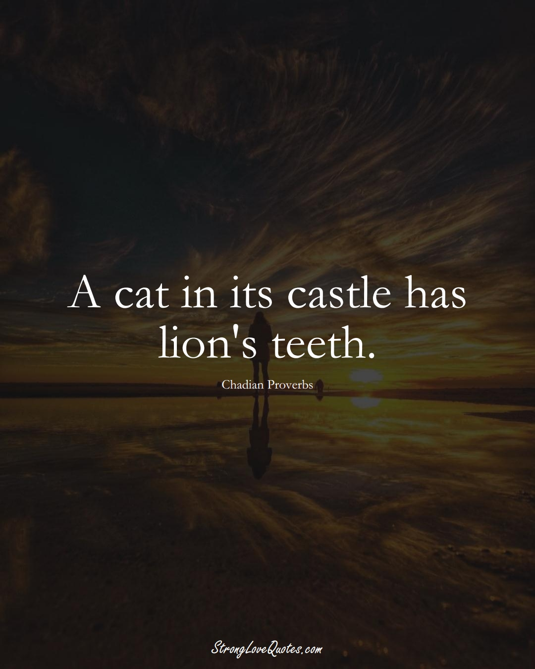 A cat in its castle has lion's teeth. (Chadian Sayings);  #AfricanSayings