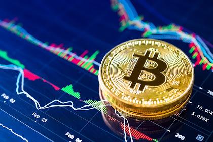 Congratulations bitcoin ?