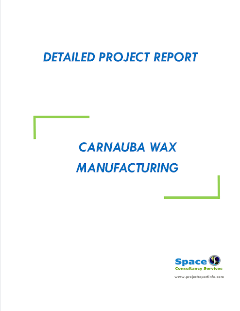 Project Report on Carnauba Wax Manufacturing