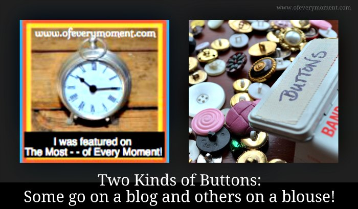 Buttons can be found on both blogs and blouses