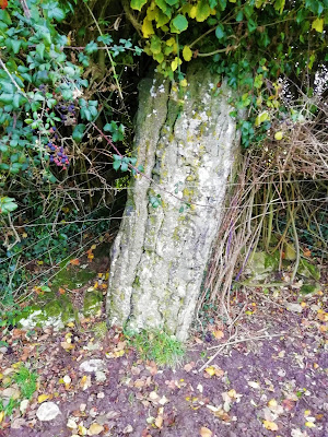 Clopook Standing Stone