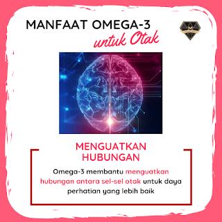 Manfaat Omega-3 untuk Otak