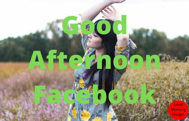quotes for good afternoon facebook