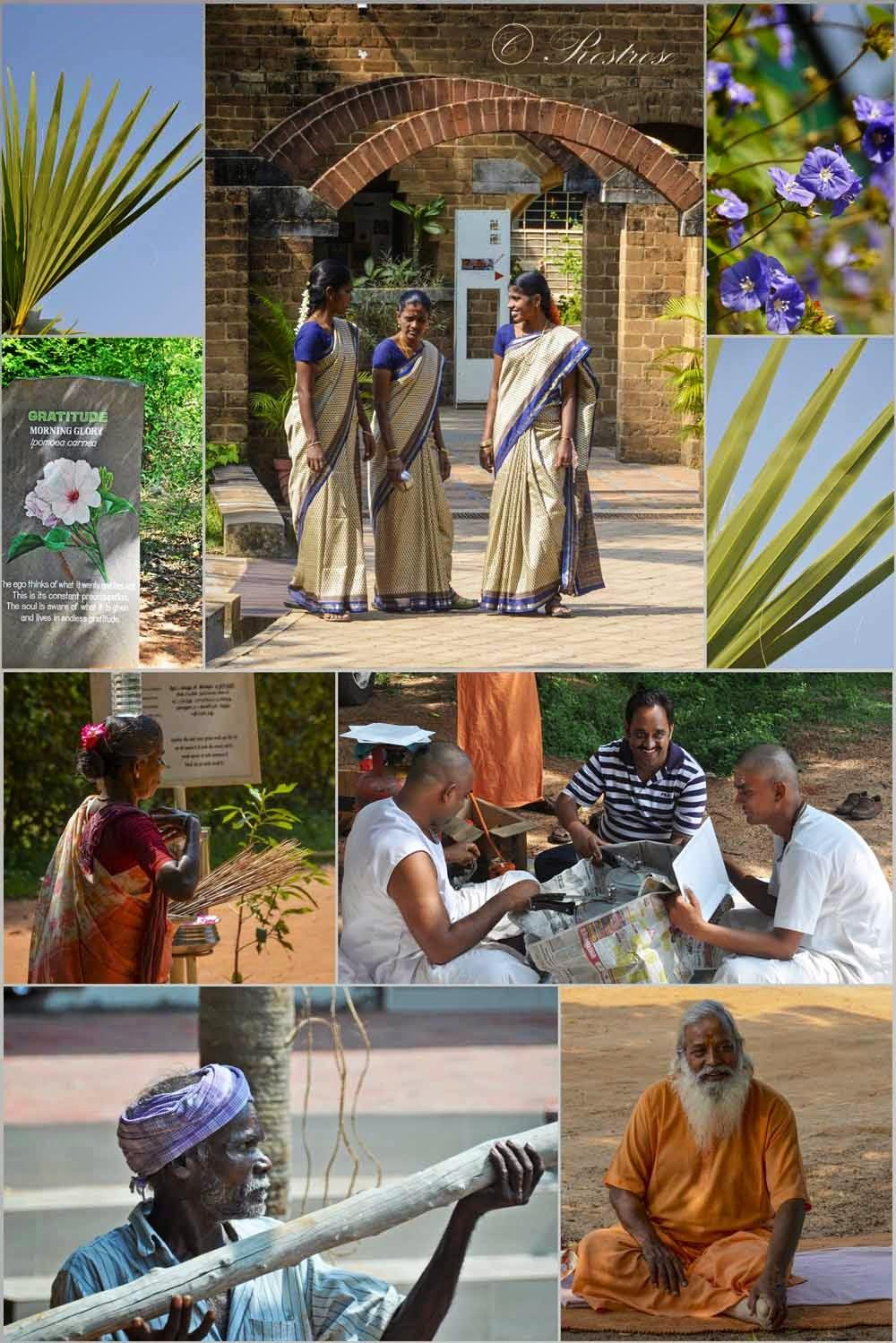 Ursprünglich War Auroville Für 50.000