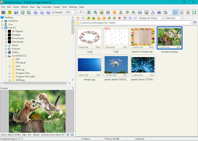 Download FastStone Image Viewer 6.8 for Windows