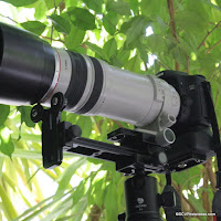 SCV Long Lens Support Brackets Ideas