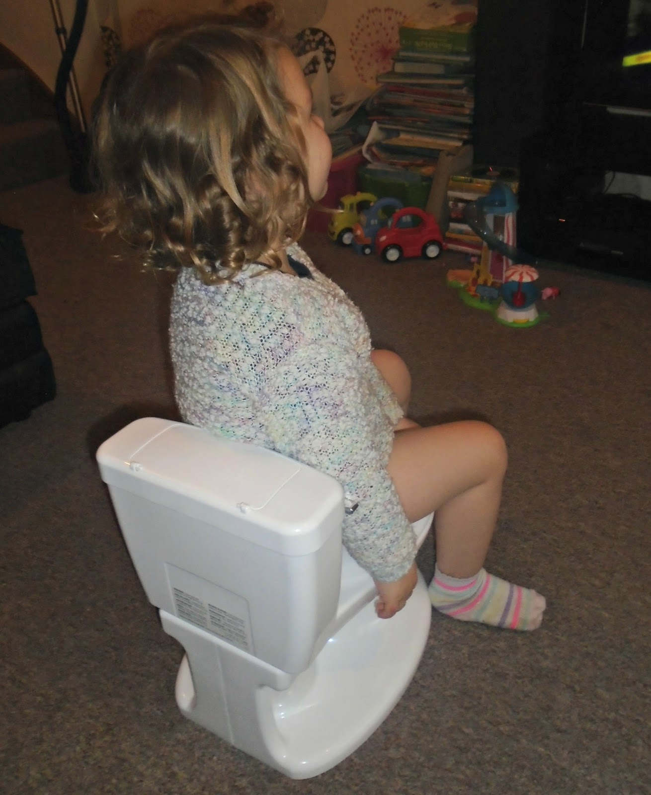d3e1382d465 Over all we give the Summer Infant my size potty a thumbs up. It has  definitely given Evelyn more of an interest in using the potty which is a  big bonus.